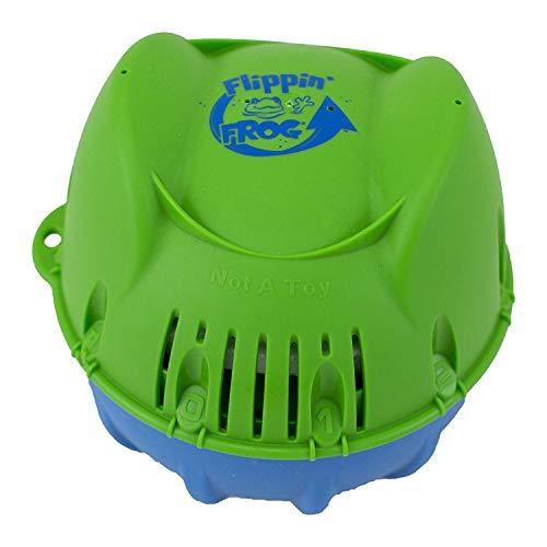 Assainisseur minéral pour piscine Flippin Frog - 2K à 5K gal.