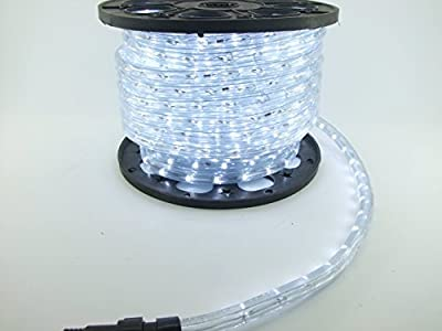 LUISHA 100ft Cool White 13mm LED Flexible Rope Light Kit for Indoor / Outdoor Lighting, Home, Garden, Patio, Shop Windows, Christmas, New Year, Wedding, Birthday, Party, Event