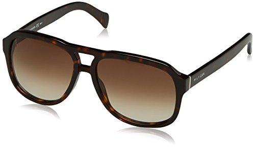 Tommy Hilfiger TH 1468/S 086HA (Havana with Brown Gradient - Aviator Sunglasses Hilfiger Mens Tommy