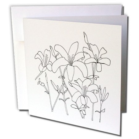 Lilies 5 Stems (CherylsArt Flowers Art - Outline Drawing of Lily Flowers Lilies on Stems with Leaves - 1 Greeting Card with envelope (gc_243761_5))
