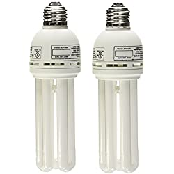 (2 Pack) Zoo Med 24975 Avian Sun 5.0 Uvb Compact Fluorescent Lamp, 26W