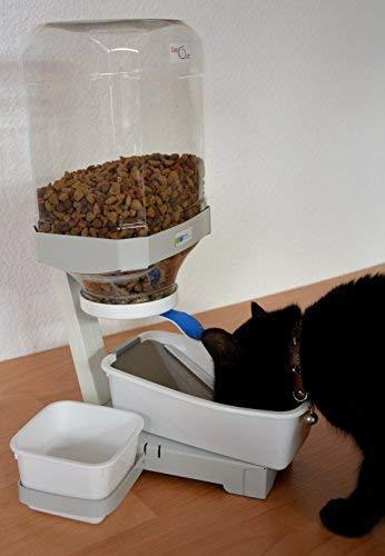 TATi-CAT SB Comedero Gatos con Comida en seco, ZUS.2 Cuencos 0,5L para Agua y húmedo Alimentos: Amazon.es: Productos para mascotas