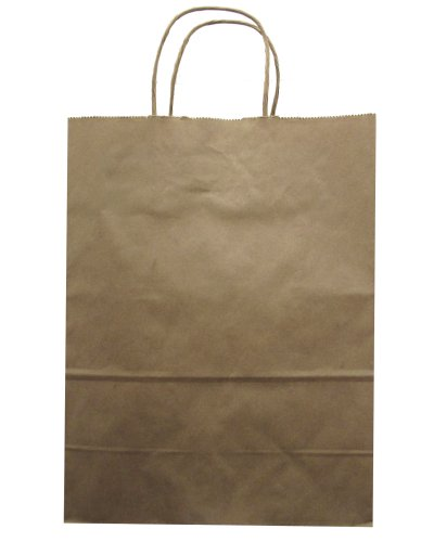 Jillson Roberts Bulk Medium Recycled Kraft Bags Available in