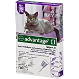 Advantage II Once-A-Month Large Cat Topical Flea Treatment, My Pet Supplies