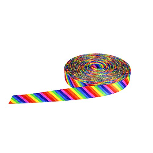 Strapworks Print Poly Webbing - Utility Strap For Outdoor Activities, Crafts, Dog Leashes - 1 Inch x 10 Yards, Rainbow Stripe