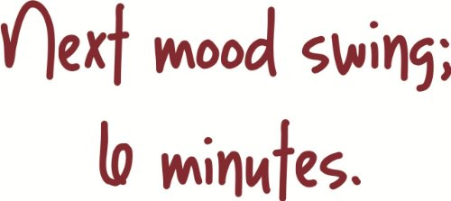 Top Selling Decals - Prices Reduced : Next mood swing 6 Minutes - Funny Lettering Quote - Girl Bedroom OR Car Bumper - Size : 6 Inches X 18 Inches - Vinyl Wall Sticker - 22 Colors Available