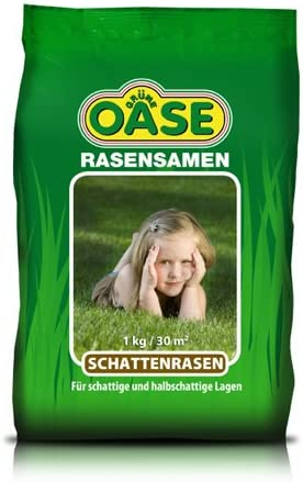Grüne Oase Schattenrasen 2,5 kg für ca. 75 m² Rasensamen