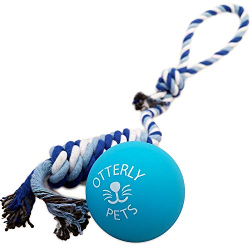 Otterly Pets Bouncy Ball Dog Toy - 100% Natural Food-Grade Rubber Solid-Core - Strong (But Not Indestructible) for Aggressive Chewers (Blue) (Best Rated Dog Toys)