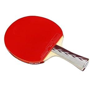 DHS x4002 (fl) neue x-Serie All-Star Tischtennisschläger