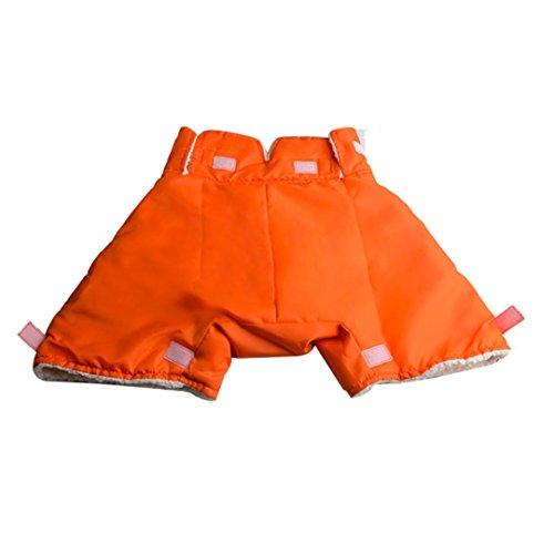 YJYdada Warm Glove Hand Warmer Cold Air Shield Hood For DJI Walkera FS RC transmitter (Orange) (Airplane Walkera)
