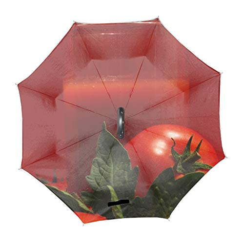 Automatic Compact Travel Umbrella with Reverse and Safe Lock Design, Teflon Auto Open Close Folding Strong Windproof Tomatoes Juice Glass Red Vegetables Umbrella