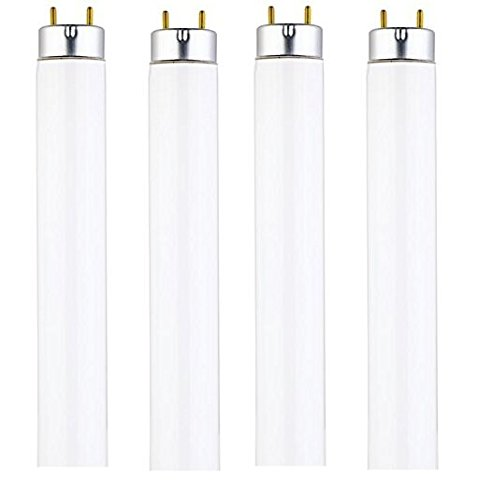 15 Watt T8 Fluorescent Tube Light Bulb, 4100K Cool White, Medium Bi-Pin Base (4-Pack)