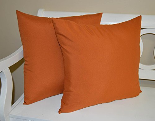 Set of 2 - Indoor / Outdoor 22'' Square Decorative Throw / Toss Pillows - Solid Pottery / Clay / Rust Orange by Resort Spa Home Decor