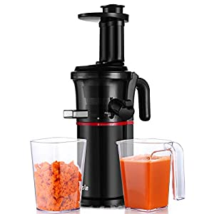 Slow Masticating Juicer Easy to Clean, Cold Press Juicer with Quiet Motor and Reverse Function, Compact Design Juicer Extractor for All Fruits and Veggies (Black)