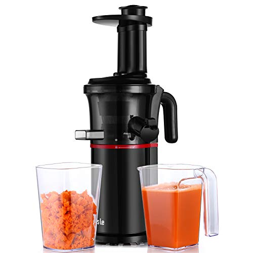 Slow Masticating Juicer Easy to Clean, Cold Press Juicer with Quiet Motor and Reverse Function, Compact Design Juicer Extractor for All Fruits and Veggies ()