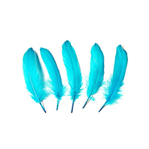 Goose feather,Hgshow 100Pcs beautiful feathers 6-8 inches 15-20 cm, choose color Useful charming -