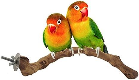 Bwogue Percha Para Pájaros Perca Natural Para Jaulas De Loro Juguete Mascotas