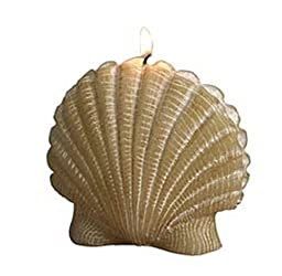 Biedermann & Sons Scallop Candle, Large, Ivory