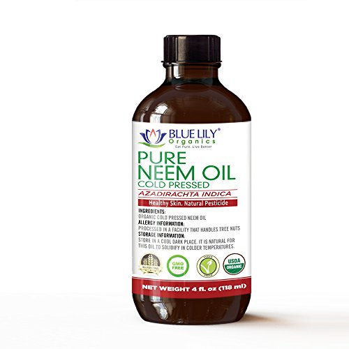 Blue Lily Organics Neem Oil 4 Fl Oz (GLASS BOTTLE), USDA Certified Organic, Cold Pressed, Unrefined, Premium Quality, 100% Pure. Used for Skin care, Hair care and in Garden for Natural Pest Control