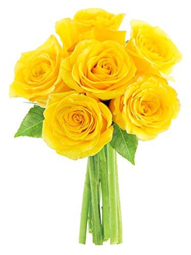 kabloom-lemon-drop-yellow-roses-half-dozen-without-vase