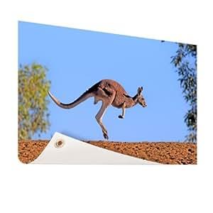 Lieblingsfoto.de Roja Canguro–Foto en jardín Póster–X cm (formatos disponibles: 60x 40, 120x 80, 200x 100) Top de calidad Jardín Banner.