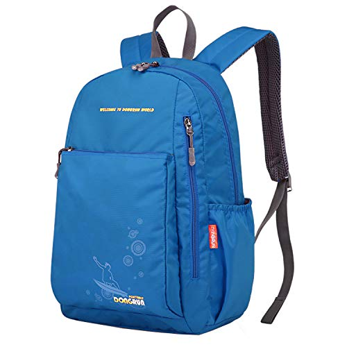 (20L Backpack, Water Proof Weekender Knapsack for Women Men Boys Girls (sky blue))