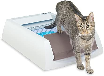 PetSafe ScoopFree Self Cleaning Automatic Disposable product image