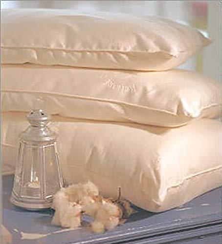 Standard Pillow Kapok Regular Fill