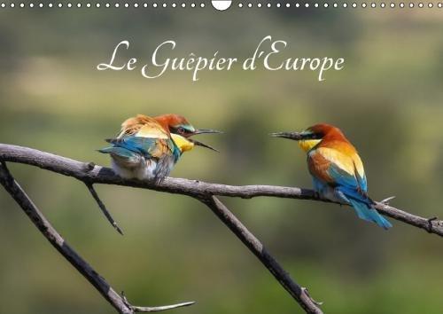Le Guepier D'europe - Merops Apiaster 2018: Decouvrez Chaque Mois Les Differentes Facettes Du Guepier D'europe. (Calvendo Animaux) (French Edition) by Calvendo Verlag GmbH