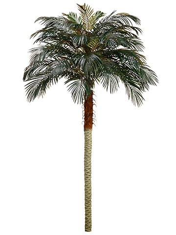 8' Phoenix Palm Tree (Pack of 2) by Silk Decor