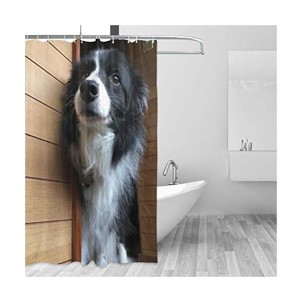 PLMOK Beautiful Border Collie Shower Curtain Waterproof Fabric Machine Washable Bathroom Polyester Lining Without PVC Shower, Bathtub 60'' 72'' 2