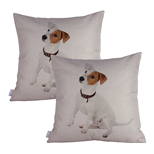 Queenie - 2 Pcs Dog Breed Series II Decorative Pillowcase Cushion Cover for Sofa Throw Pillow Case 18 X 18 Inch 45 X 45 Cm, Set of 2 (Russell Terrier)