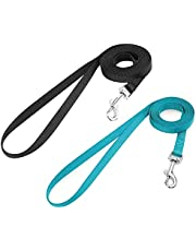 rabbitgoo Small Pet Leash, Cat Walking Long Nylon Dog Leashes, Easy Control Lightweight Durable Kitten Puppy Leash with 360 Degree Swivel Clip, Training Leashes for Small Medium Cat, 59 inches, 2 Pack