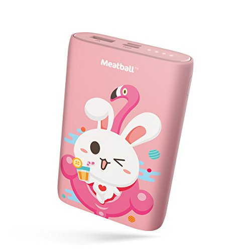 Samsung Portable Battery Charging Pack - 9