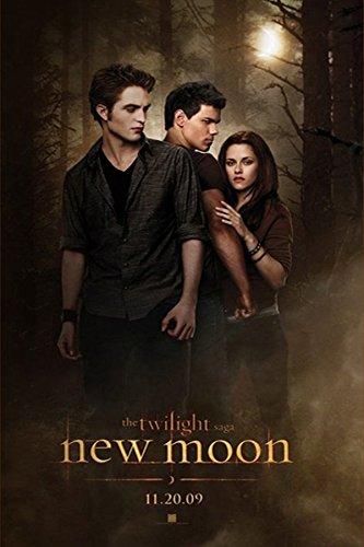 Twilight New Moon Group Vampire Drama Romance Fantasy Movie