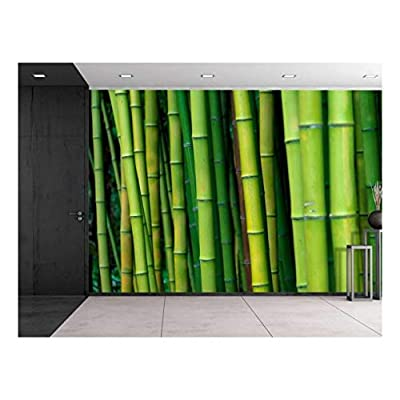 Created Just For You, Stunning Style, Green Bamboo Trees Wall Mural