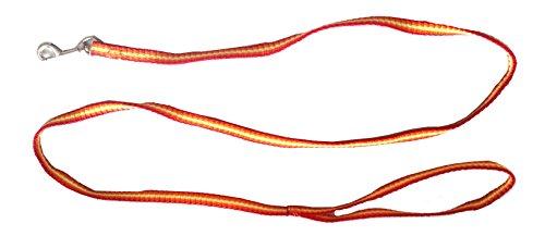 Iconic pet rainbow leash, medium, yellow