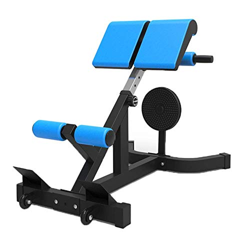 LWPCP Incline Decline Weight Bench, Foldable & Adjustable Roman Chair Exercise Equipment, Profession Dumbbell Benches, 350 lb Capacity for Home Comfort ()