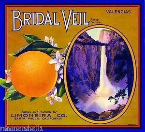 MAGNET Santa Paula Bridal Veil Yosemite Orange Citrus Fruit Crate Magnet Art Print
