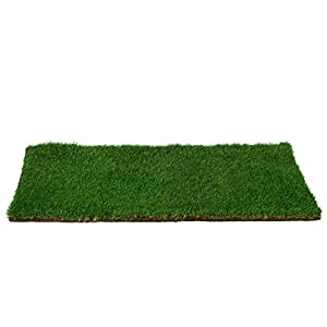 Patio Pet Life Farm Fresh Pet Grass, Large