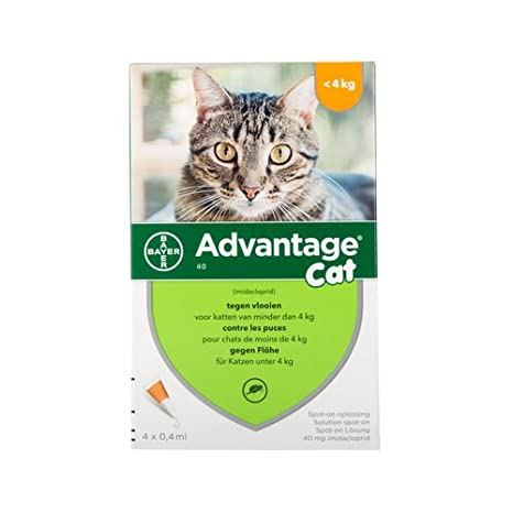 Advantage 40 para gatos < 4 kg - 4 pipetas: Amazon.es: Productos para mascotas