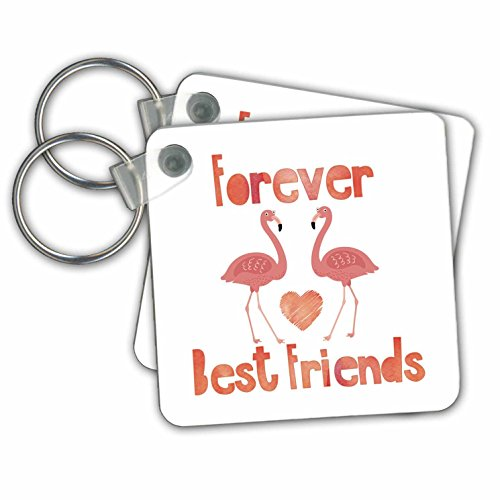 Andrea Haase Inspirational Typography - Forever Best Friends Typography With Two Flamingo Birds - Key Chains - set of 2 Key Chains (kc_276376_1)