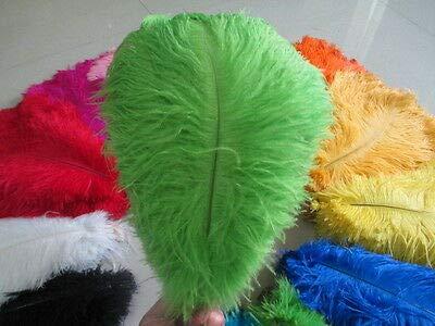 FidgetGear 美しい10/20/50/100個のナチュラルダチョウの羽14-16インチ/ 35-40 cm 緑   B07SDKZF57