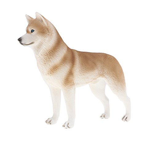 (MagiDeal Plastic Realistic Animals Husky Action Figure Pet Dog Toys Playset, Kids Toddler Nature Learning Toys Home Decor Collectibles)
