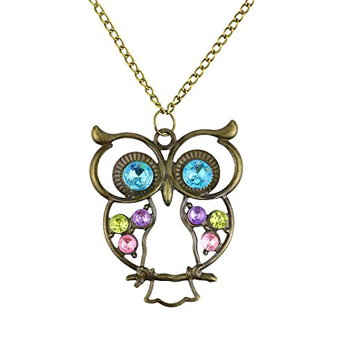 (Caetle Big Eye Hollow Owl Bird Love Lover Chain Necklace)
