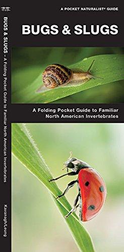 Bugs & Slugs: A Folding Pocket Guide to Familiar North American Invertebrates (A Pocket Naturalist Guide)