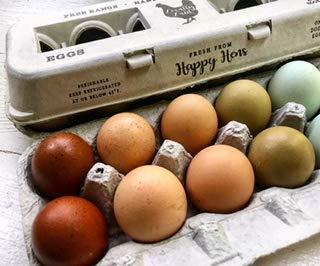 Egg Cartons- Printed Recycled Egg Carton, Bulk 250 Egg Cartons per Bundle, Attractive Farm Fresh Design w/FDA reqs, One Dozen Eggs, Recycled Paper Pulp Cardboard, Small Medium Large & XL Eggs by Henlay (Image #3)