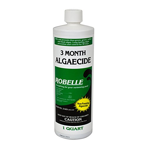 Robelle 2165 3-Month Algaecide for Swimming Pools, 1 Quart (Best Algaecide For Gunite Pools)