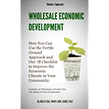 Wholesale Economic Development -- I. Approach