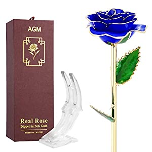 AGM Gold Rose Flower, 24k Artificial Flowers Dipped in Gold with Transparent Stand for Lover, Mother, Girlfriend in Gift Box, Gift for Mother's Day, Valentine's Day, Wedding Day, Home Decor 90